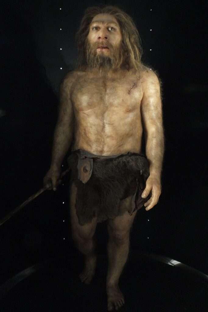 home neandertal reconstrucció