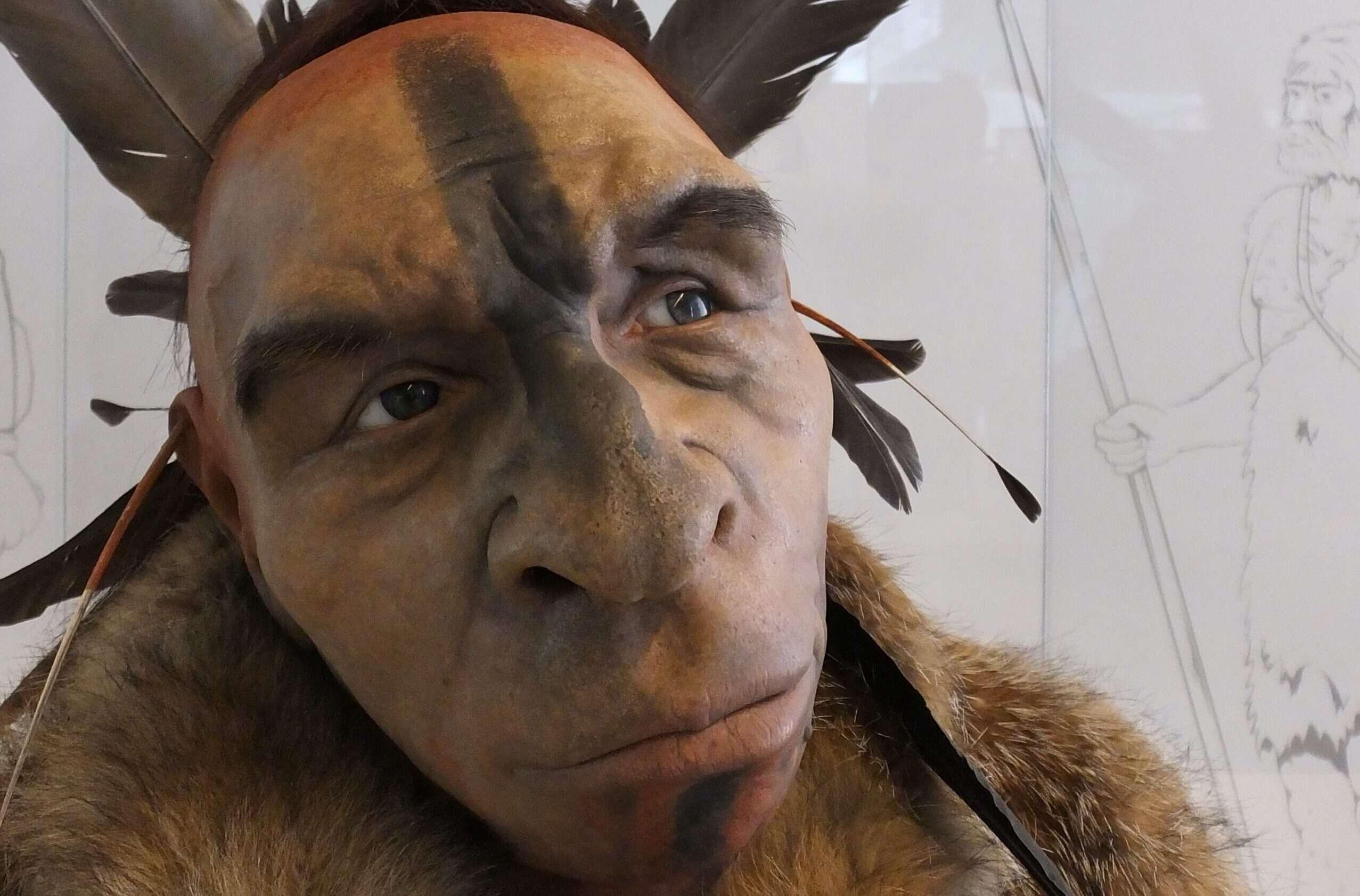 You are currently viewing Característiques dels neandertals explicades per la teva àvia