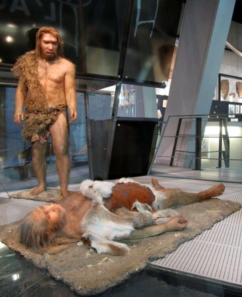 enterramiento neandertal enterrament compassió