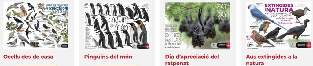 posters animals descarregables
