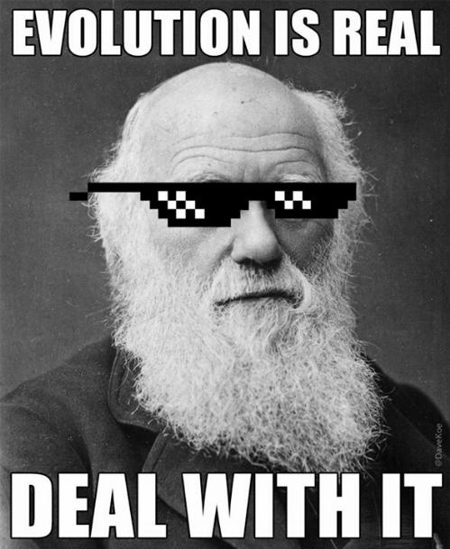 meme darwin deal with it