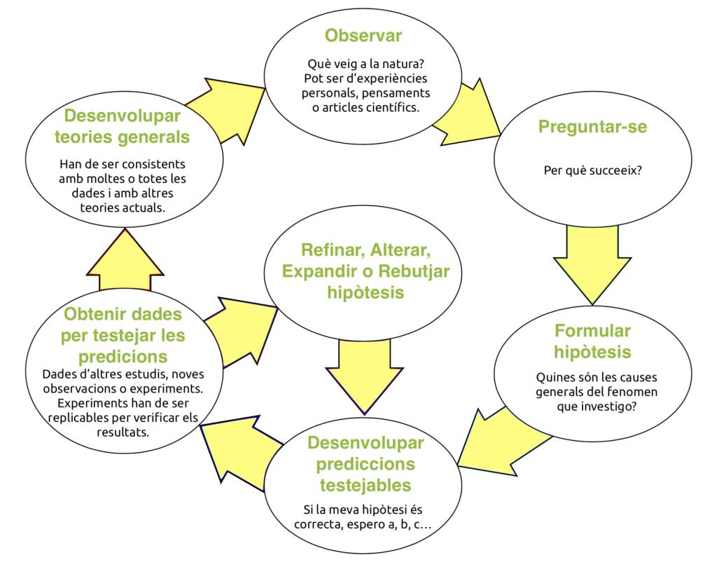 esquema mètode científic