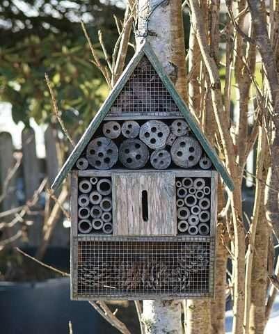 hotel de insectos para niños insectes cassolà