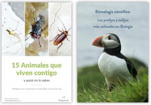 guia etimologia cientifica bichos que viven en casa