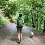 Avantatges i desavantatges del bipedisme o perquè et fa mal l'esquena