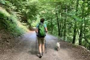 Read more about the article Avantatges i desavantatges del bipedisme o perquè et fa mal l'esquena